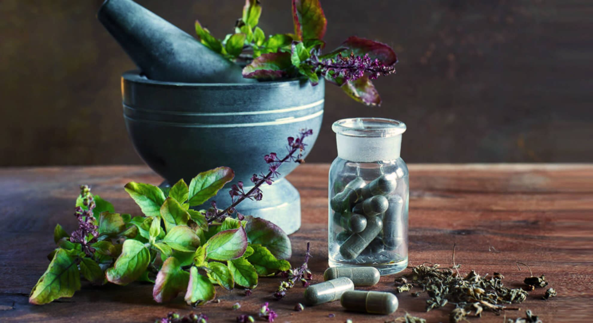 Herbal supplements for treating erection problems