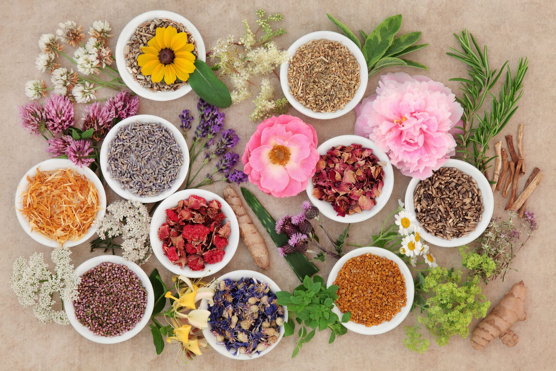 Herbal Supplements Safety Recommendations