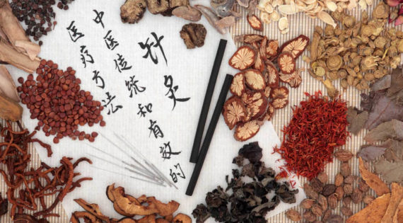 Chinese traditional medicine against excess weight
